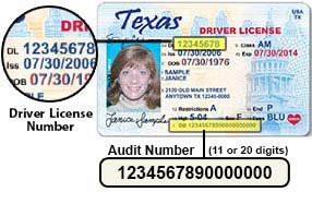 Audit number new texas license download free wingrutracker for Driver license motor vehicle record